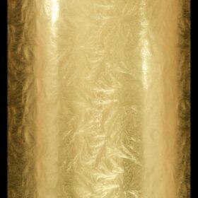 Gold Akita
