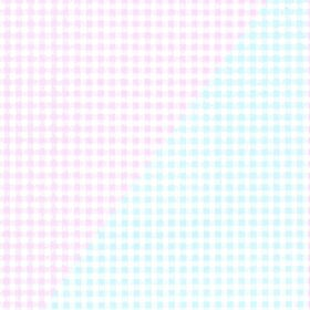 Pink and Blue Gingham