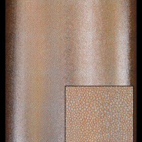 Copper Stingray