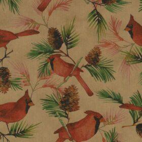 Pinecones and Cardinals