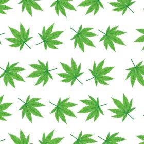 Cannabis Kraft