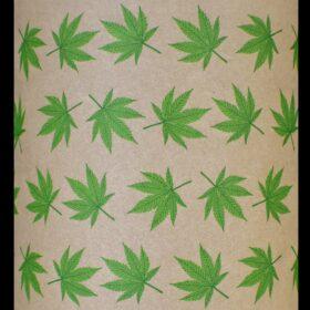 Cannabis Pilgrim